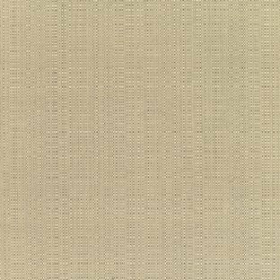 Sunbrella Linen Champagne Fabric