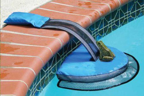 Frog Log Pool Escape Ramp