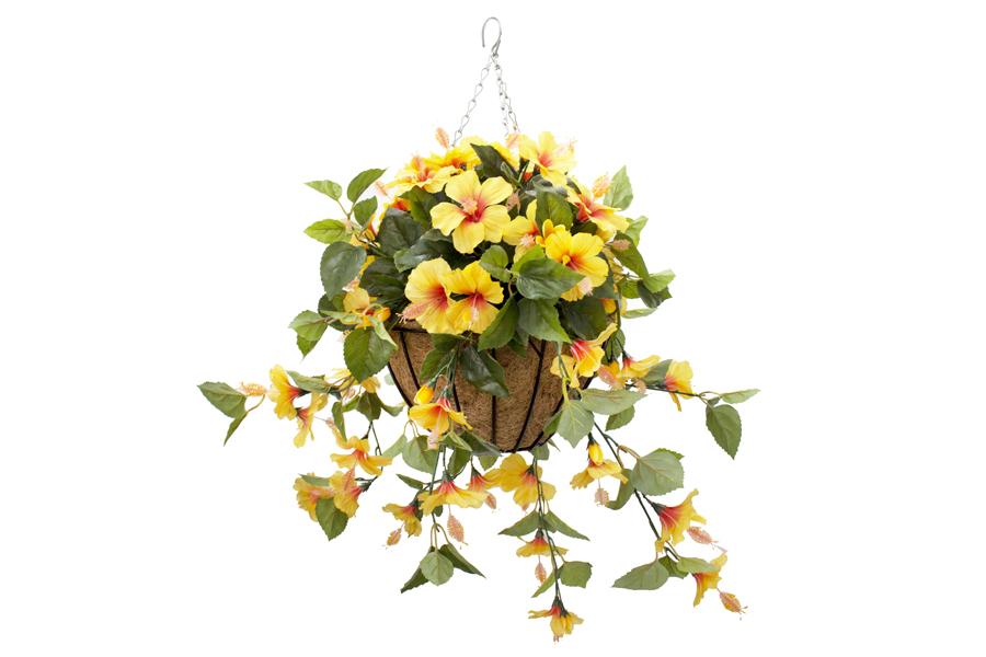 Hanging Basket Yellow Hibiscus Flowers