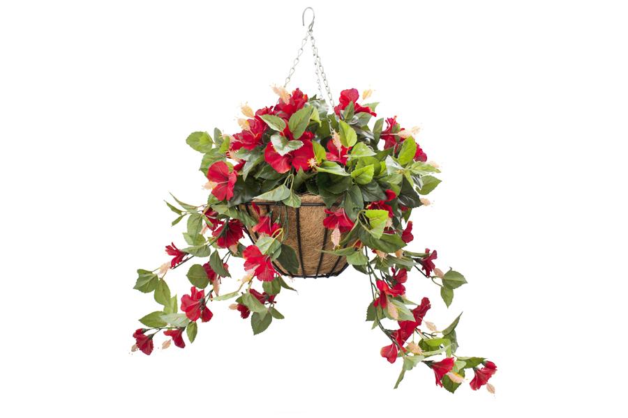 Hanging Basket Red Hibiscus