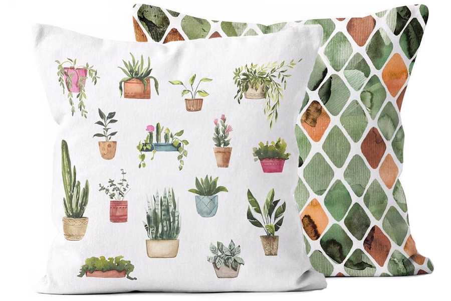 Urban Oasis Potted Plants Cantelope